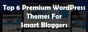 Top 6 premium wordpress themes